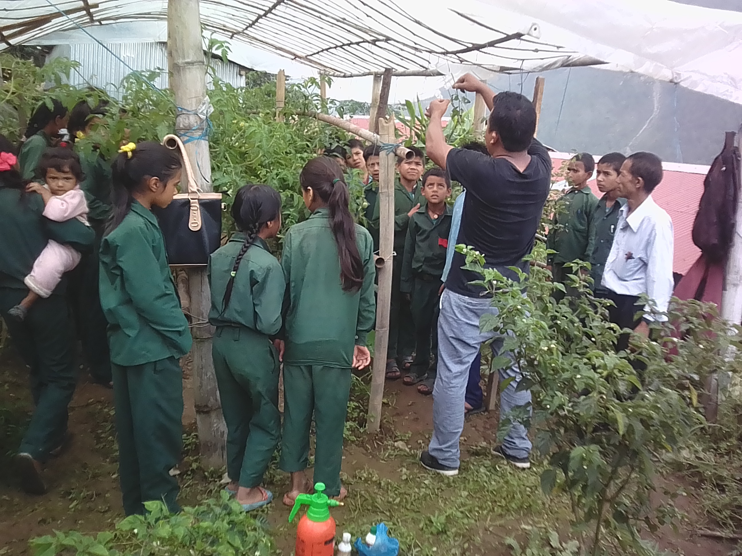 Agriculture in Schools lesson, Jan. 2018