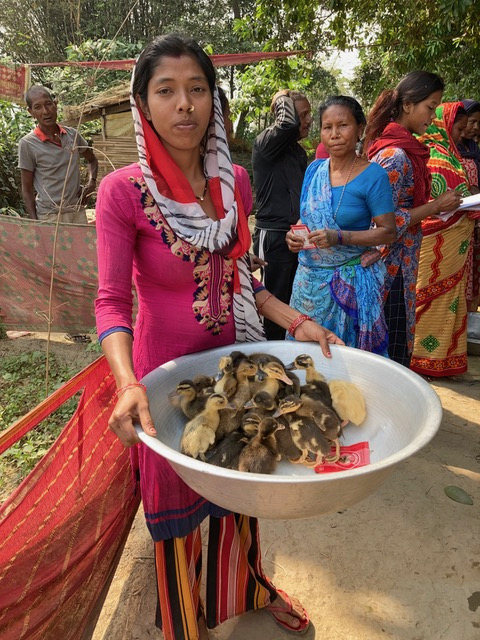 Ducklings distributed to women farmers