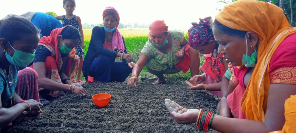 Practical agricultural training